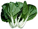 photo: buy Cabbage PAK Choi White Stem Great Heirloom Vegetable 400 Seeds online, best price $0.99 new 2017-2016 bestseller, review