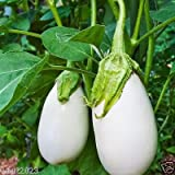 photo: buy 100 White Eggplant Seeds -