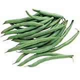 photo: buy Burpee Blue Lake 274 Bush Bean Seeds 2 ounces of seed online, best price $6.69 new 2018-2017 bestseller, review