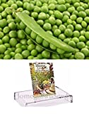 photo: buy Homegrown Pea Seeds, 130 Seeds, Organic Garden Sweet Pea online, best price $4.89 new 2018-2017 bestseller, review
