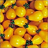 photo: buy TOMATO,YELLOW PEAR TOMATO SEED, HEIRLOOM, ORGANIC, NON-GMO, 25+ SEEDS, TASTY, GREAT FOR SALADS online, best price $1.94 new 2018-2017 bestseller, review