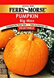 photo: buy Ferry-Morse Pumpkin - Big Max Seeds online, best price $5.36 new 2018-2017 bestseller, review