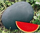 photo: buy Dwqgroup Heirloom Gray Skin Big Long Red Sweet Seedless Watermelon Organic Seed, Professional Pack, 50 Seeds / Pack, 100% True Seed online, best price $18.29 new 2018-2017 bestseller, review