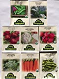 photo: buy CERTIFIED ORGANIC NON-GMO PREMIUM WINTER VEGETABLE GARDEN SEED COLLECTION. Heirloom seeds USDA Lab tested. Broccoli, Beet, Carrot, Cauliflower, Fava Bean, Kale, Pea, Radish. Gardener & chef favorites! online, best price $14.49 new 2018-2017 bestseller, review