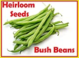 photo: buy Green Bean Seeds-Heirloom variety-Blue Lake Bush Bean Planting Seeds-50+ Seeds-USA grown and Shipped from USA online, best price $7.98 new 2018-2017 bestseller, review