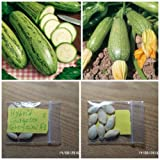 photo: buy Courgette ''Greyzini F1'' HYBRID ~8 Top Quality Seeds - Very Productive - Early online, best price $7.10 new 2018-2017 bestseller, review