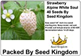 photo: buy Strawberry Alpine White Soul (Fragaria Vesca) Great Heirloom Vegetable 40 Seeds By Seed Kingdom online, best price $1.95 new 2018-2017 bestseller, review