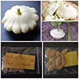 photo: buy White Patty Pan Courgette ~10 Top Quality Seeds - Amazing Variety! online, best price $7.10 new 2018-2017 bestseller, review