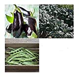 photo: buy David's Garden Seeds Companion Set Eggplant 4563 (Multi) 3 Varieties 650 Seeds (Non-GMO, Open Pollinated, Heirloom, Organic) online, best price $15.95 new 2019-2018 bestseller, review