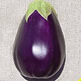 photo: buy Everwilde Farms - 250 Black Beauty Eggplant Seeds - Gold Vault Jumbo Seed Packet online, best price $2.50 new 2018-2017 bestseller, review