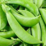 photo: buy Peas, Sugar Snap Pea Seed, Organic, NON- GMO, 20 seeds per package,◾Green peas are one of the most nutritious leguminous vegetables, rich in health benefiting phyto-nutrients, minerals, vitamins and anti-oxidants. online, best price $4.87 new 2017-2016 bestseller, review