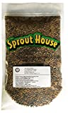 photo: buy The Sprout House Veggie Queen Salad Mix Certified Organic Non-gmo Sprouting Seeds - Red Clover, Red Lentil, French Lentil, Daikon Radish, Fenugreek 1 Pound online, best price $14.90 new 2018-2017 bestseller, review