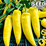 photo: buy Hungarian Wax Hot Pepper Seeds - 200 Seeds Non-GMO online, best price $1.95 new 2018-2017 bestseller, review