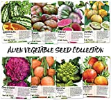 photo: buy Alien Vegetable Seed Collection (8 Individual Seed Packets) Non-GMO Seeds by Seed Needs online, best price $12.50 new 2018-2017 bestseller, review
